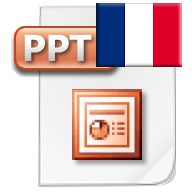 Download Presentation in French